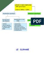 Clonage Banques