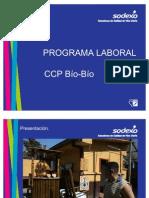 Programa Laboral Difusion Vf