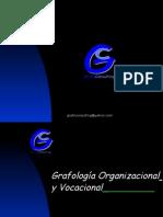 Ultimapresentacion Logo