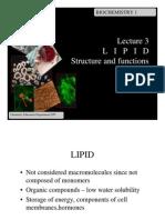 Lipid