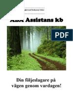 Personlig assistans i enlighet med brukarens behov och beslut enligt LSS