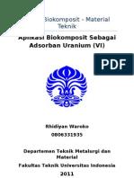 Bi-Functionalized Biocomposite
