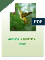 Agenda rio Ambiental