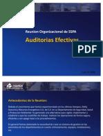 Auditorias Efectivas