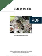 Basic Beekeeping Manual 1 Part 02