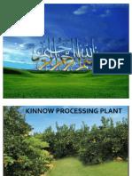 Kinnow Processing Plant (Sitrus Fruit)