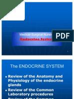 Medical-Surgical 1(Endocrine system)
