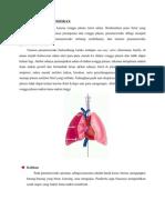 pneumothoraks