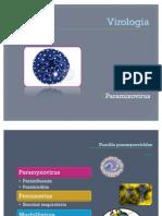 Virologia  paramyxovirus