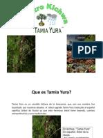 Atractivos Turisticos Tamia Yura 2011