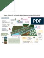 Produção Agricola e Conservação Ambiental