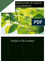 Phytoremediation in Waste Management