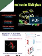 Tema II - Estructura de las proteínas (completo)