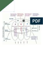 Integral Psychic Diagram
