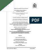 Análisis Estructural de Dos Poblaciones de Dioon edule Lindl. (Zamiacea) en poblaciones indigenas y mestizas de la región de la Palma S.L.P.