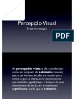 Percepcao Visual