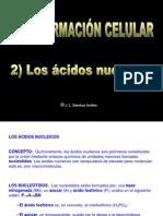 i2adnpdf1-110919092704-phpapp02