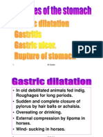 Gastric Dilatation in monogastric animals by Ali Sadiek