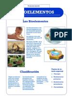 Los+Bioelementos