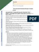 Javier González-Maeso et al- Identification of a Novel Serotonin/Glutamate Receptor Complex Implicated in Psychosis