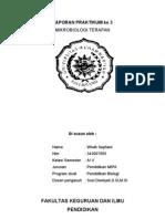 31918978 Laporan Praktikum Flora Normal Tubuh Manusia