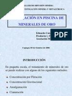 Cianuracion de Mineral de Oro en Bateas, Eduardo Catalano