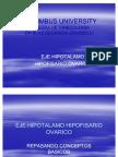 Ginecologia Eje Hho Presentacion 1 (2)