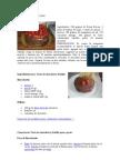 Torta de Fresa Con Chocolate
