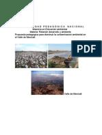 Propuesta pedagógica. Jaime Botello. Materia Desarrollo-ambiente