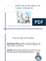 valoracion_prueba_indiciaria