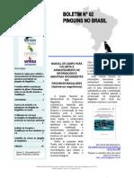 Boletim Pinguins no Brasil N°2