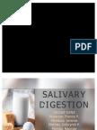 Salivary Digestion