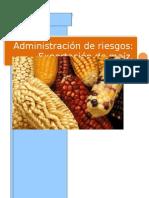 Trabajo Admin is Trac Ion de Riesgos Completo do
