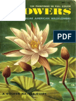 Flowers - A Golden Nature Guide