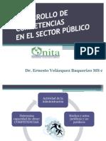 COMPETENCIAS EN EL SECTOR PÚBLICO II