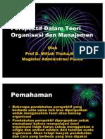 prespektif dalam organisasi dan manajemen