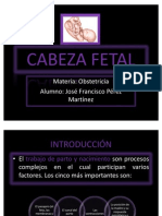 Cabeza Fetal Obstetricia