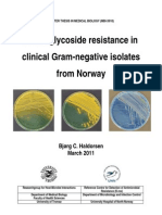 Aminoglycoside Resistance in Clinical Gram-Negative Isolates From Norway