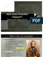 How Does Evolution Happen