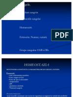 Curs 1- Homeostazia