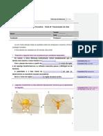 12. Ficha de avaliação formativa do dia 25 de maio de 2011 2º CEB