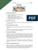 acuicultura 2
