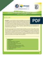 Boletín PUCP