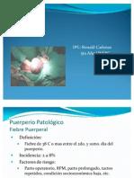 Puerperio normal y patológico dr yesid acosta p. Ppt descargar.