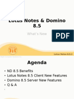 Lotus Notes & Domino 8new Features