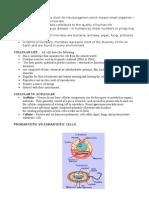 Microbe Handout 2012