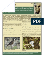 Feral Hogs' Impact on Ground-Nesting Birds