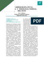 Ecografia Fetal
