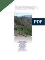 Impacto Potencial Del Cambio Climatico en Eventos Epidemicos Del Gorgojo Descortezador Del Pino Dendroctonus Frontalis (Coleoptera Curculionidae-1
