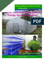 Invernadero Forraje Verde Hidropónico -F.V.H.